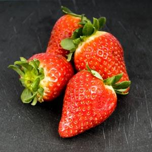 Arôme primaire ou secondaire du vin - Les arômes de fraise sont très recherchées dans le vin - Guide du vin en ligne de Tastavin.