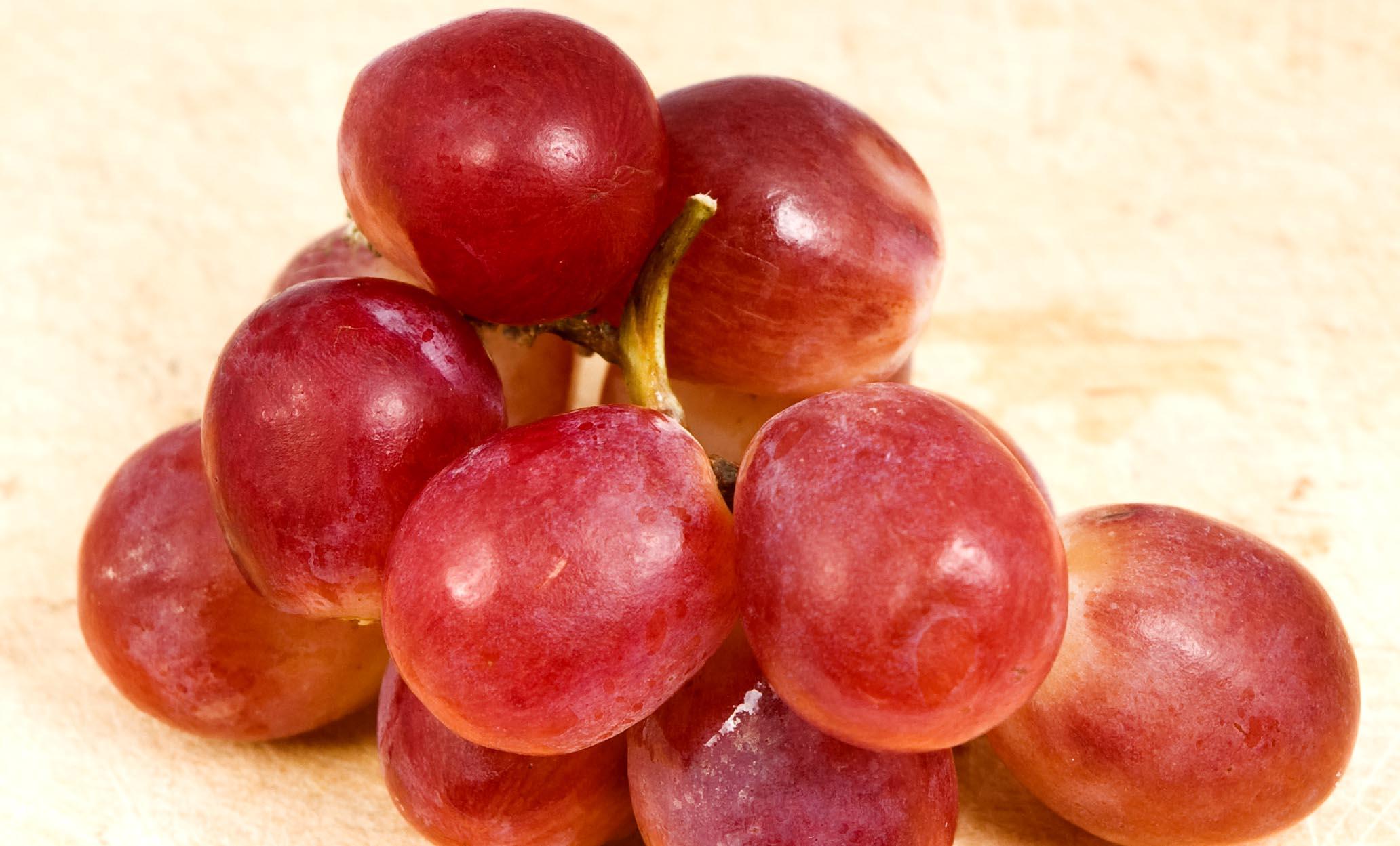 Arôme du vin Muscat - Guide du vin en ligne Tastavin