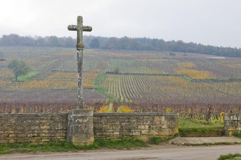 Vignoble de Bourgogne - Guide du vin Tastavin - Histoire et caractéristique de la région bourguignonne