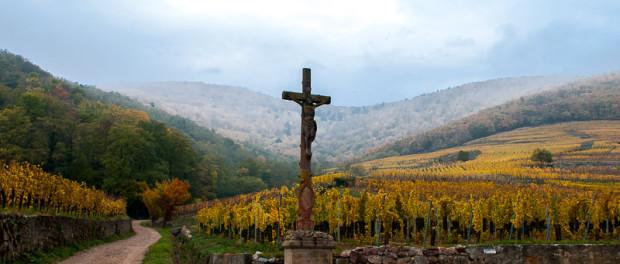 Actualités du vin et blog du caviste en ligne Tastavin