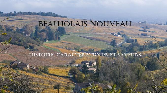 Beaujolais nouveau - Histoire, caract=eristiques et saveurs sur le guide du vin en ligne de Tastavin.