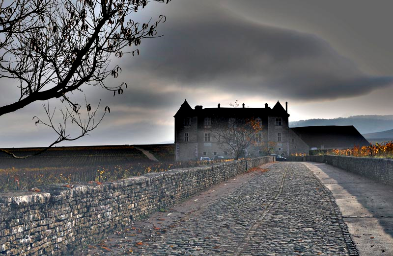 Clos Vougeot sous la pluie, le climat est souvent plus agréable et les conditions optimales pour le vin dans le Bordelais - Bourgogne versus Bordeaux le duel. Tastavin blog du vin.