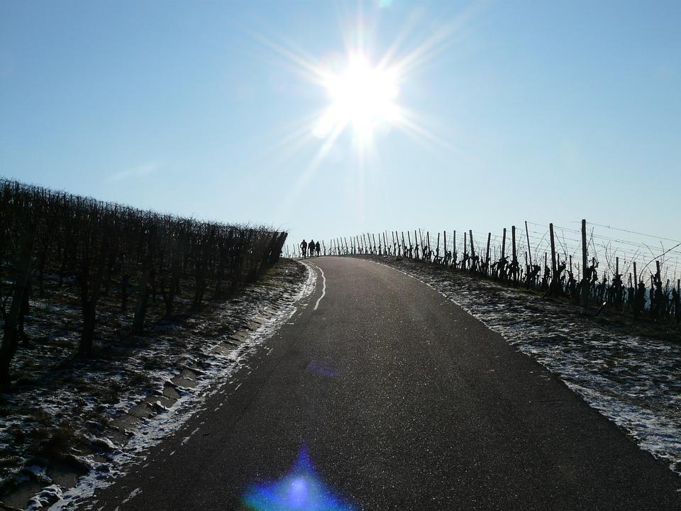 Route gelée au milieu du vignoble bourguignon au printemps 2016