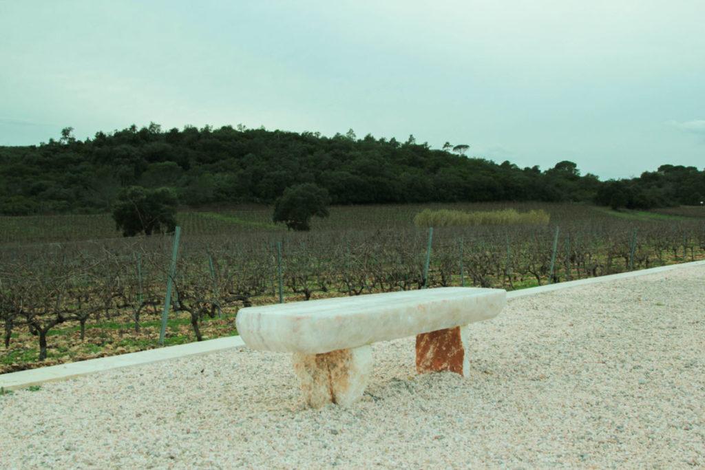 Domaine de la bouverie - vue de l'extérieur sur les vignes