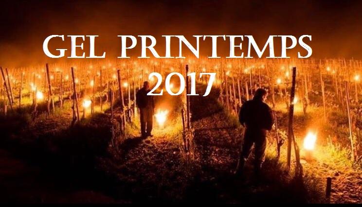 Vignoble francais - Gel printemps 2017 - Tastavin vendeur de vin en ligne