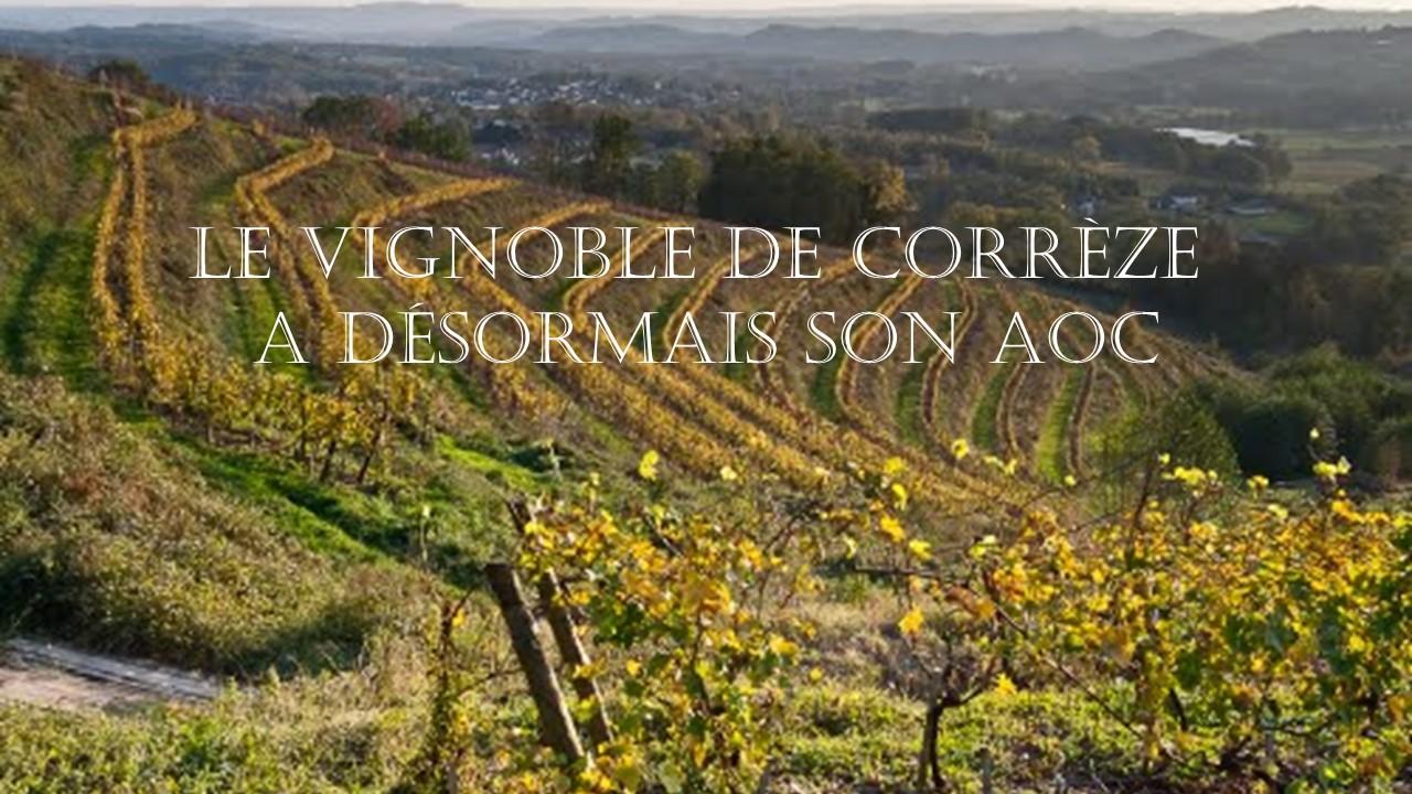 Le vignoble de Correze a son AOP - Blog du vin Tastavin