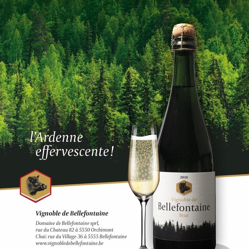 Vin belge brut effervescent du domaine de Bellefontaine