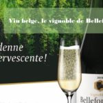 Vin belge du vignoble de Bellefontaine - Tastavin caviste et livraison de vin en ligne