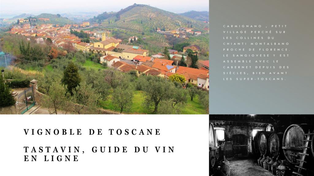 Le Carmignano est une très petite appellation perchée sur les collines du Chianti Montalbano qui surplombent Florence. Vignoble de Toscane guide du vin en ligne Tastavin.