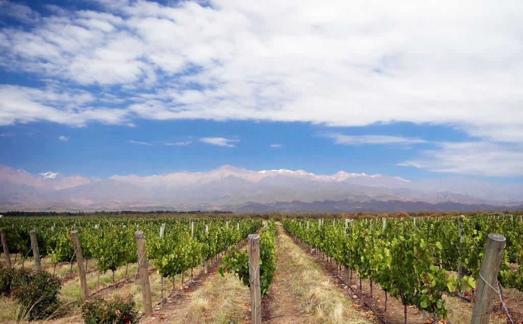 Mendoza en Argentine où s est déroulé le concours de meilleur sommelier du monde en 2016 - Blog du vin de votre vendeur de vin sur internet Tastavin