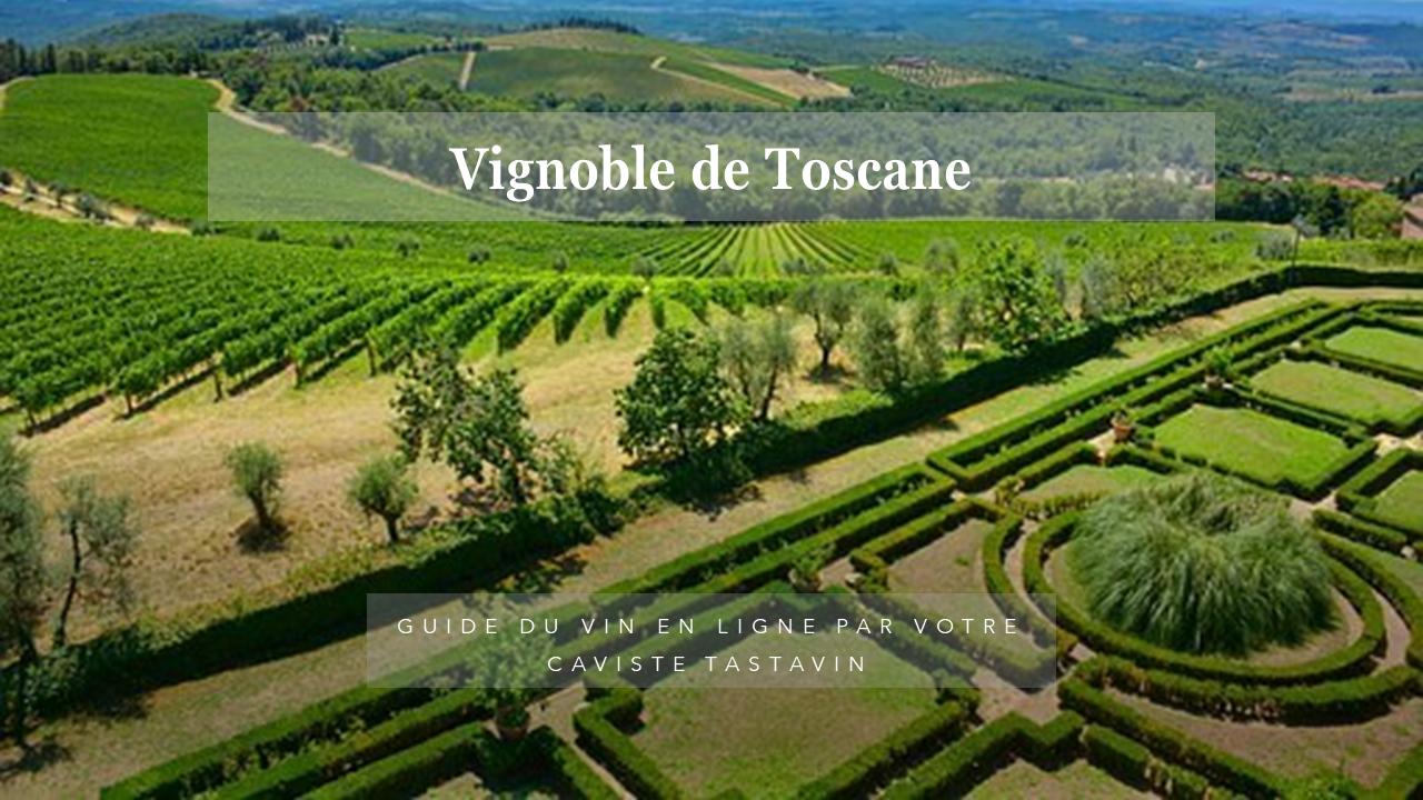 Vignoble de Toscane - Histoire, particularités, appelations et cépages sur le guide du vin en ligne de votre caviste Tastavin